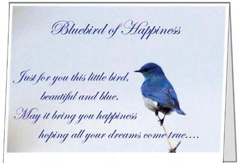 Free Gift Folded Bluebird of Happiness