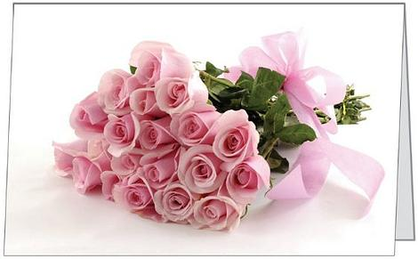 Free Gift Folded Card Pink Roses