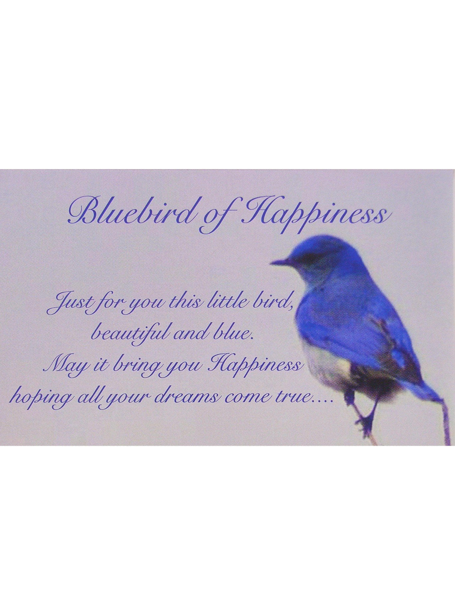 Bluebird of Happiness Heart Photo Locket